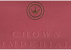 1955 Chrysler Imperial Limo