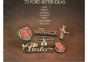 1973 Ford Better Ideas