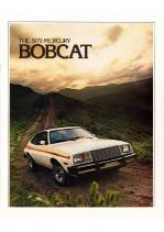 1979 Mercury Bobcat