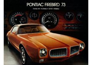 1973 Pontiac Firebird CN