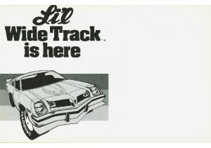 1975 Pontiac Astre Li'l Wide Track