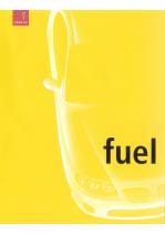 2003 Pontiac Fuel For Soul