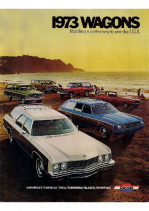 1973 Chevrolet Wagons