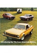 1973 AMC Full Line V2