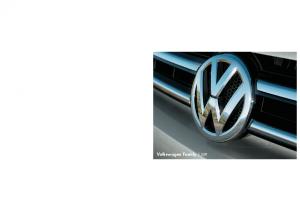 2011 VW family