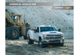 2018 Chevrolet Commercial Vehicles