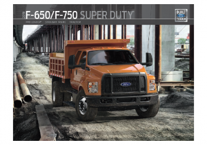 2019 Ford F-650-750