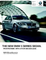 2015 BMW 5 Series Sedan