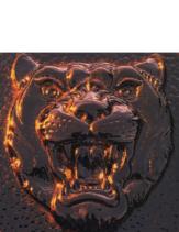 1991 Jaguar Full Line