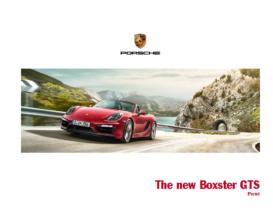 2014 Porsche Boxster GTS V1