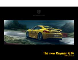 2015 Porsche Cayman GT4 V1