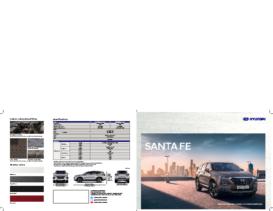 2021 Hyundai Santa Fe ID