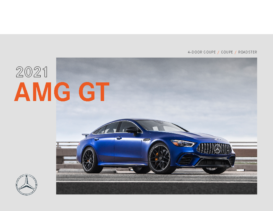 2021 Mercedes-Benz AMG GT Family